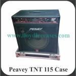 Peavey TNT 115 Case